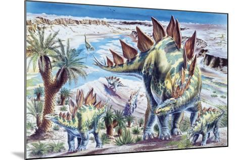 Illustration Representing Group of Stegosaurus in Jurassic Landscape--Mounted Giclee Print