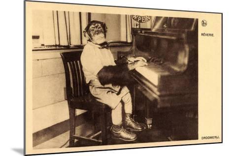 Portrait Eines Schimpansen, Der Klavier Spielt--Mounted Giclee Print