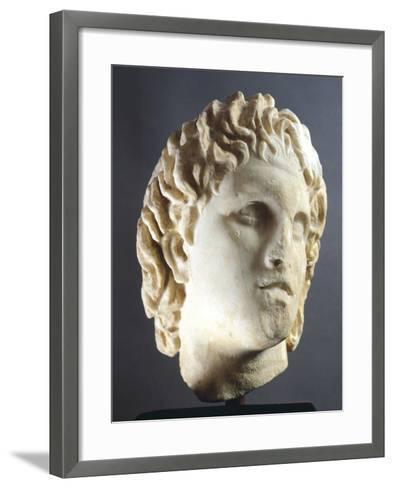 Head of Alexander Sculpture from Pella, Greece BC--Framed Art Print