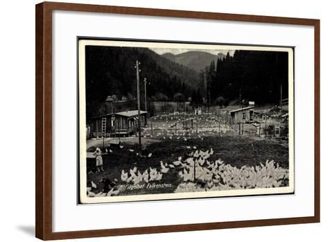 Falkenstein Vogtland, Geflügelhof, Hühner, Landwirtschaft, Gehege--Framed Art Print