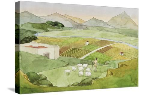 Illustration Representing Shephard Herding Sheep on Field, Italy--Stretched Canvas Print