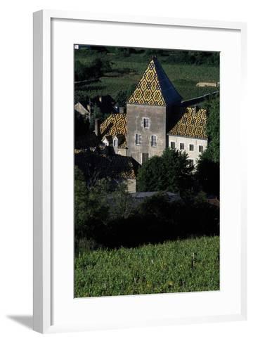 Decorated Roofs, Santenay Castle, Burgundy, France--Framed Art Print