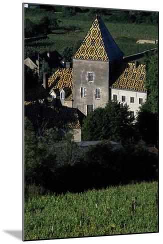 Decorated Roofs, Santenay Castle, Burgundy, France--Mounted Giclee Print