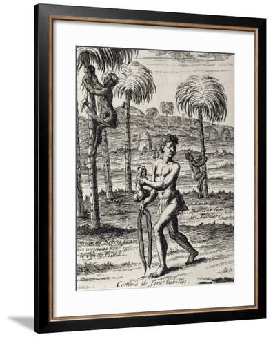 Harvesting La Palma Wine and Native Customs, Senegal from Lemaire's Travel, 1682--Framed Art Print