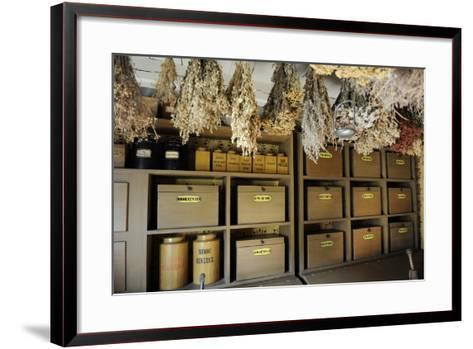 Apothecary's, Ancient Herbalism--Framed Art Print