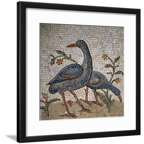 Mosaic of Water Birds Uncovered in Trier, Germany--Framed Art Print