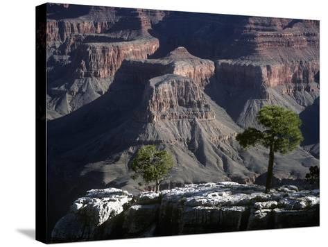 USA, Arizona, Grand Canyon National Park, South Rim, Grand Canyon--Stretched Canvas Print