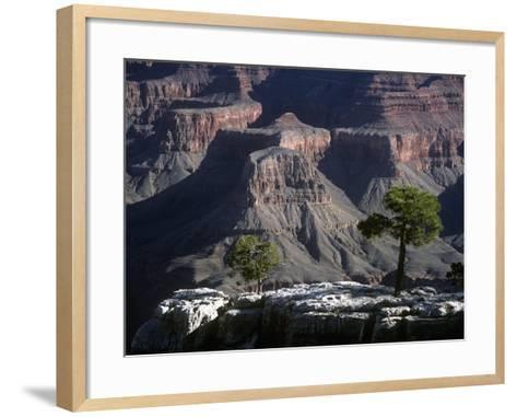 USA, Arizona, Grand Canyon National Park, South Rim, Grand Canyon--Framed Art Print