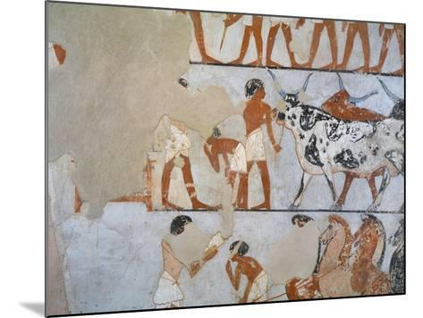 Egypt, Thebes, Luxor, Tomb of Army General Tjenuny, Mural Paintings Showing Cows and Horses--Mounted Giclee Print