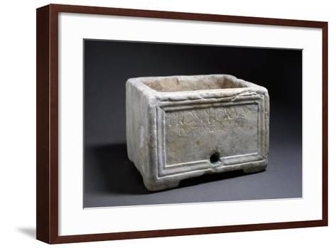 Rectangular Marble Funerary Urn with Bas-Relief Decorations--Framed Art Print