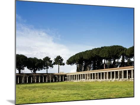 Italy, Pompeii, Great Gym--Mounted Giclee Print