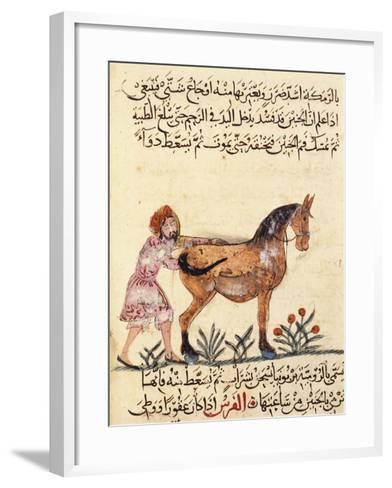 Veterinary Surgeon Helping a Horse to Foal, Miniature, Islamic Art, 13th Century--Framed Art Print