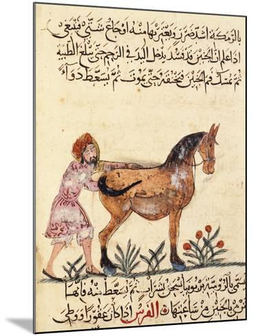 Veterinary Surgeon Helping a Horse to Foal, Miniature, Islamic Art, 13th Century--Mounted Giclee Print