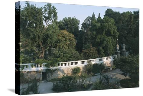 Italy, Veneto Region, Padua, Arboretum at Botanical Garden--Stretched Canvas Print