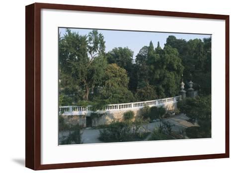 Italy, Veneto Region, Padua, Arboretum at Botanical Garden--Framed Art Print
