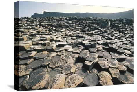 UK, Northern Ireland, County Antrim, Giant's Causeway, Basaltic Prisms--Stretched Canvas Print