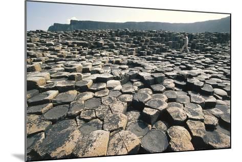 UK, Northern Ireland, County Antrim, Giant's Causeway, Basaltic Prisms--Mounted Giclee Print