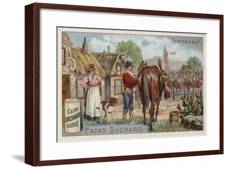 Ostrich Farm, Transvaal--Framed Art Print