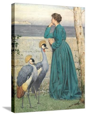 Waiting and Watching-Henry Stacey Marks-Stretched Canvas Print