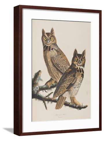 Illustration from 'Birds of America', 1827-38-John James Audubon-Framed Art Print