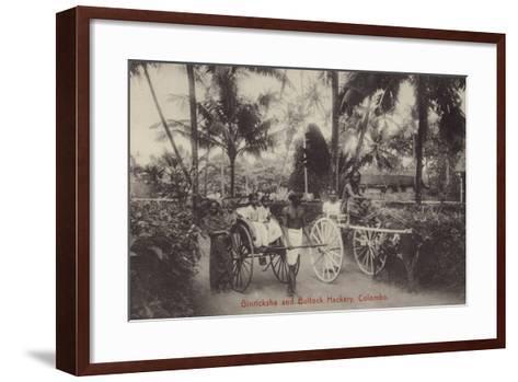 Ginricksha and Bullock Hackery in Colombo--Framed Art Print