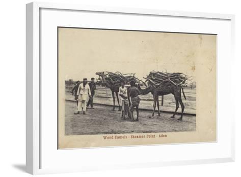 Camels Carrying Wood, Steamer Point, Aden--Framed Art Print