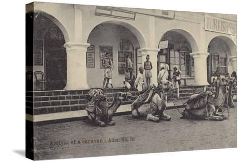 Arrival of a Caravan, Aden--Stretched Canvas Print