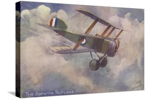 Sopwith Triplane--Stretched Canvas Print