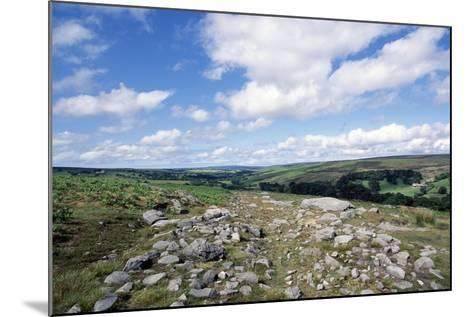 Wheeldale Roman Road, North York Moors National Park, North Yorkshire, England, United Kingdom--Mounted Giclee Print