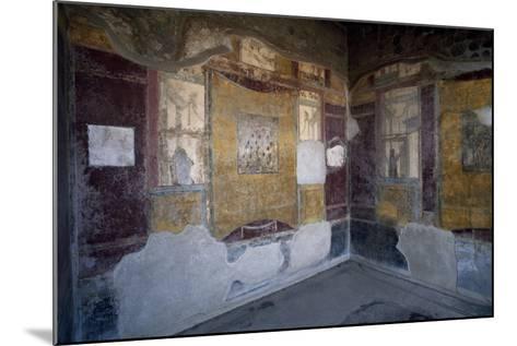 Frescoed Hall, Villa Arianna, Stabiae, Campania, Italy BC, Detail--Mounted Giclee Print