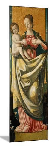 Madonna Del Suffragio, C.1520--Mounted Giclee Print