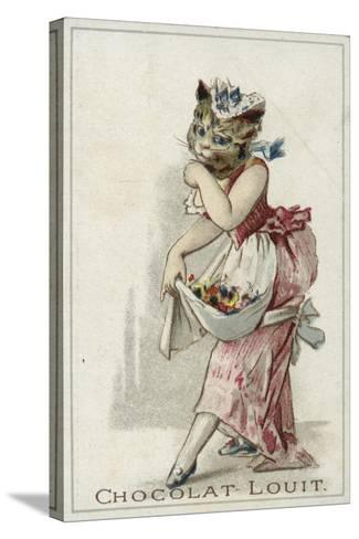Cat Wearing a Dress--Stretched Canvas Print