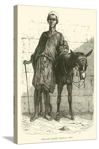Fellah, Arab; Donkey Boy--Stretched Canvas Print