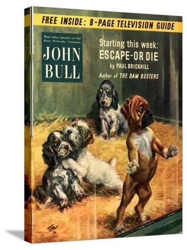 Front Cover of 'John Bull', September 1952--Stretched Canvas Print