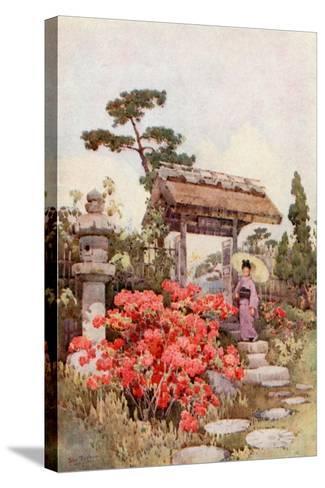 Azaleas-Ella Du Cane-Stretched Canvas Print