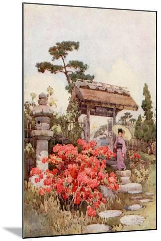 Azaleas-Ella Du Cane-Mounted Giclee Print