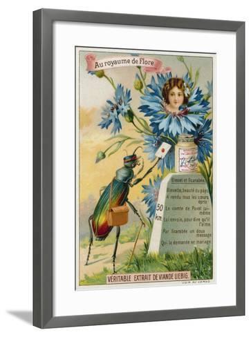 Cornflower and Beetle--Framed Art Print