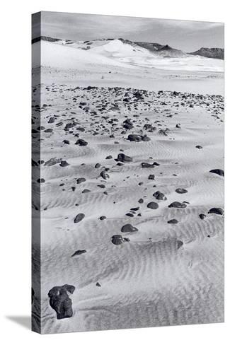 Untitled, 1990-2000-Didier Gaillard-Stretched Canvas Print