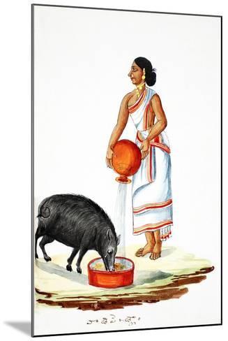 Feeding a Wild Pig--Mounted Giclee Print
