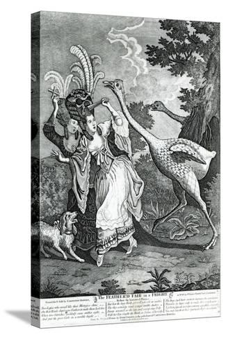 The Feathered Friend in a Fright, 1779-John Collet-Stretched Canvas Print