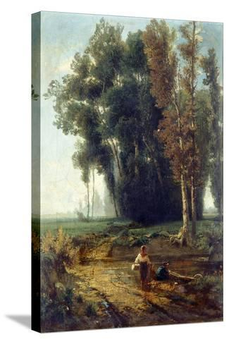 Woods with Water and Scrubs-Giovanni Corvini-Stretched Canvas Print
