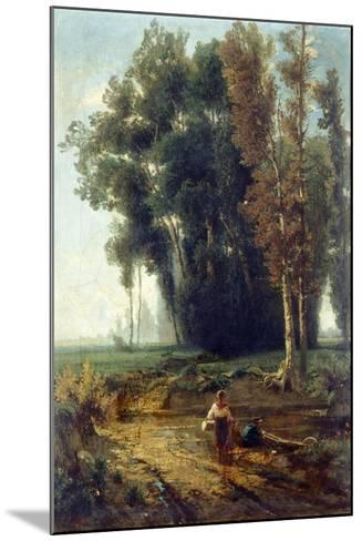 Woods with Water and Scrubs-Giovanni Corvini-Mounted Giclee Print
