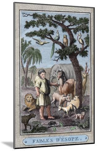 Aesop--Mounted Giclee Print