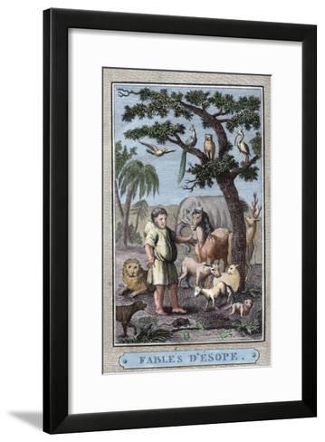 Aesop--Framed Art Print