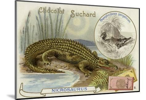 Nicrosaurus and Crocodile--Mounted Giclee Print