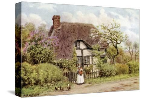 Lilac and Apple Blossoms, Harvington, Worcester-Alfred Robert Quinton-Stretched Canvas Print