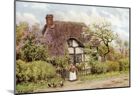 Lilac and Apple Blossoms, Harvington, Worcester-Alfred Robert Quinton-Mounted Giclee Print