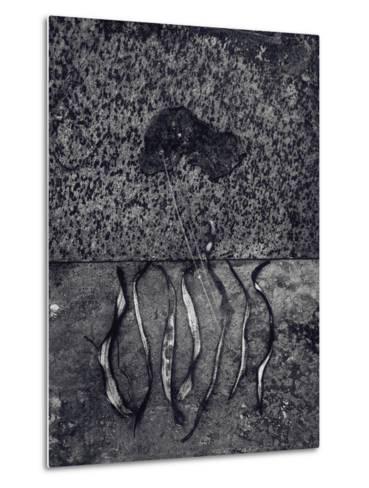 Untitled, 1990-2000-Didier Gaillard-Metal Print