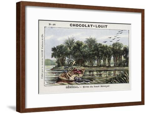 Banks of the Upper Senegal River, Senegal--Framed Art Print