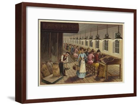 Cocoa Processing Plant--Framed Art Print